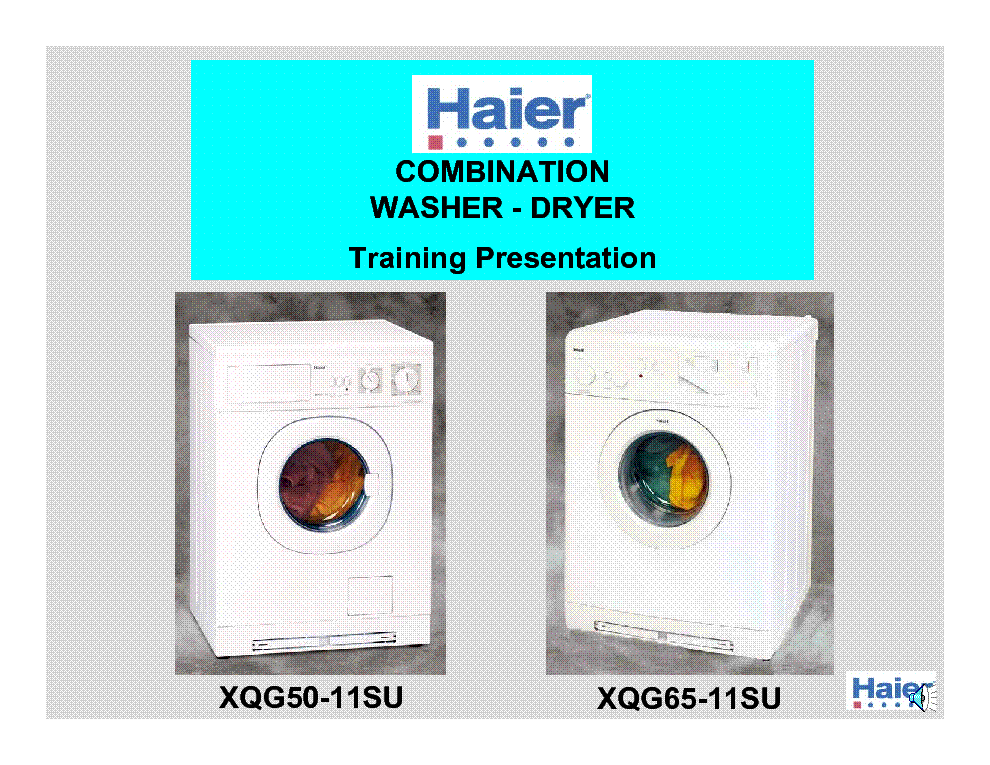 Haier Training